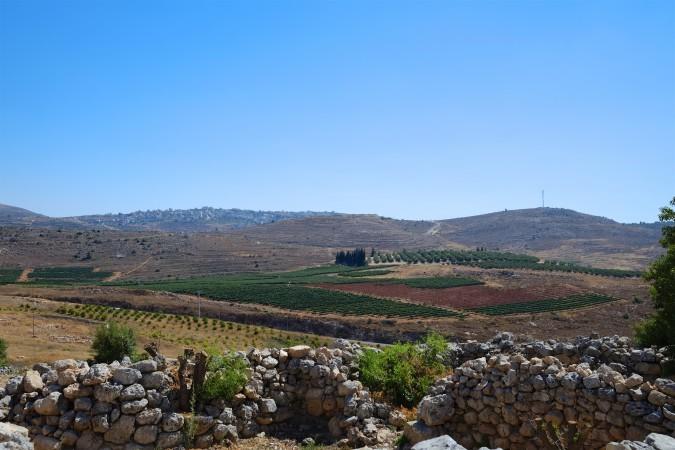 wijngaarden samaria